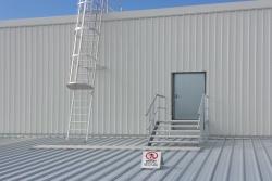 Cage-Ladder.jpg